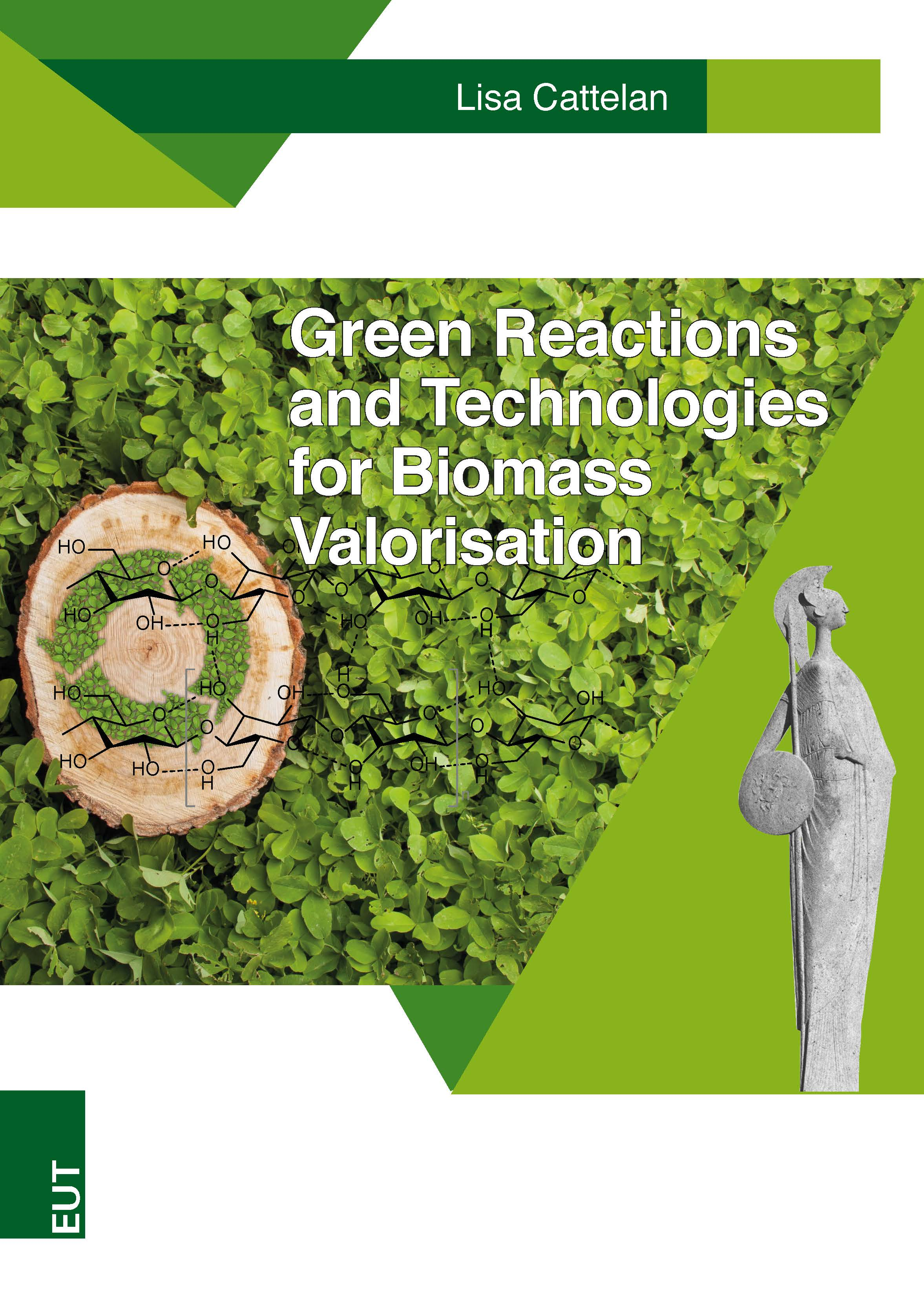 Green Reactions and Technologies for Biomass Valorisation
